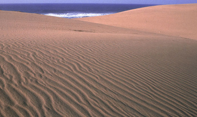 The Tottori Sand Dunes are the largest sand dunes in Japan, with many unique terrains.